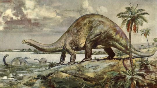 What's the largest land animal of all time?