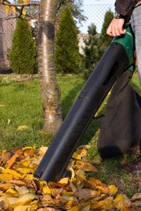 Many lawn and garden vacuums will shred leaves, too.