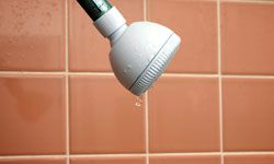 How much money could you waste if you let that shower head drip, drip, drip?