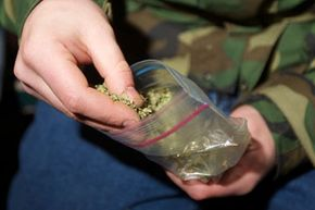 A law legalizing the recreational use of marijuana took effect on Dec. 6, 2012 in Seattle, Wash. Want to learn more? Check out these controlled substance pictures.