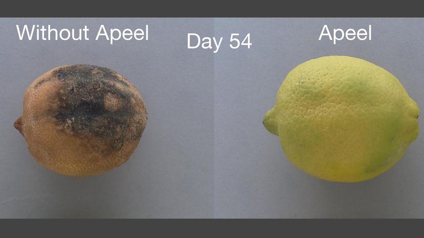 produce, waste
