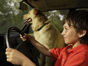 Allowing your underage child to drive is bad enough, let alone driving with your dog unsecured.