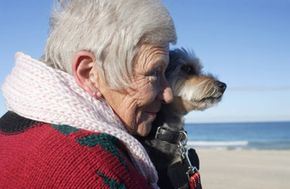 Owning a pet could have several health advantages.