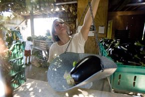 A woman at Ithaca, New York's Eco Village co-op weighs vegetables.