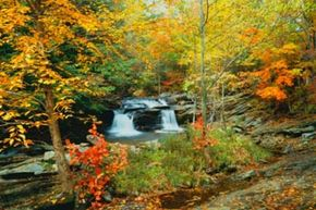 A small cascading waterfall flows down the rocks in the Green Mountains of Vermont.
