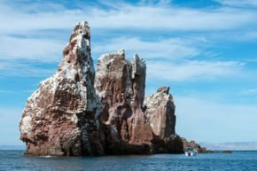 Snow-capped peaks? Nope. The Los Islotes islands in Mexico's Sea of Cortez are covered in bird poop.