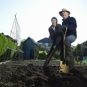 Happier times, when you maintained your landscape together.