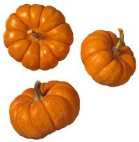 Pumpkins are full of beta-carotene, an essential antioxidant that helps exfoliate your skin.