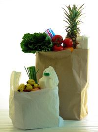 For the battle over which is greener, neither paper nor plastic have it in the bag.