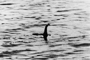 This is one of the famous 'surgeon's photographs' of the Loch Ness monster allegedly taken by Dr. R. Kenneth Wilson. Many years later, someone confessed the photos had been staged.