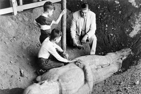 The Cardiff Giant was still a leading attraction at The Farmer's Museum when this picture was taken in 1955. The original owner, George Hull, made a fortune in the 1860s off claiming this was a real giant.