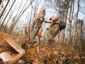 Deer hunters drag a four-point buck in Hastings, Michigan.
