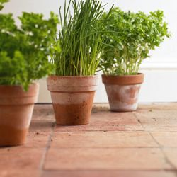 Don't use the same tile that you would in your kitchen or bathroom. Make sure it's supposed to be used outdoors.