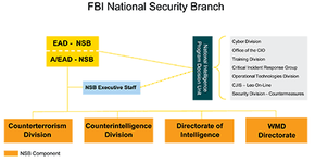 Organization Chart of the FBI National Security Service