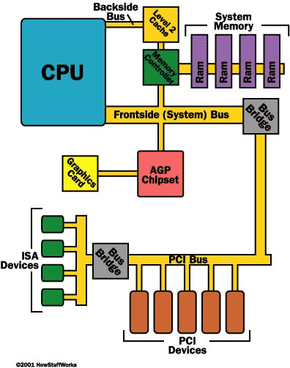The illustration above shows how the various buses connect to the CPU.