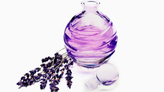 Why can one perfume produce different scents on the same person?