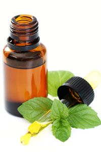 Need help with your concentration? A whiff of peppermint oil could improve your focus and cognitive performance.