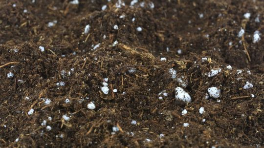 Perlite: It's Like Popcorn for Your Potting Soil!