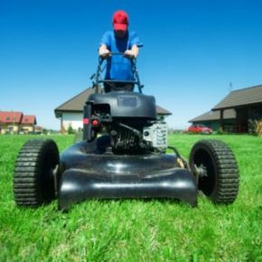 The way you smell after you mow the lawn is more complicated than one might think.