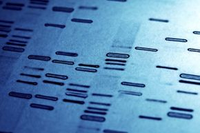 Studying the human genome and mapping genes that were linked with disease brought us into the modern era of personalized medicine.