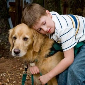 Some disorders, like autism, may require special treatment, such as guide dogs.