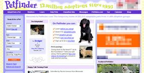 The Petfinder homepage. See more pet pictures.