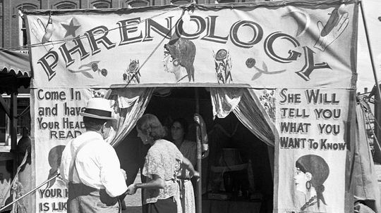 Why Was Phrenology All the Rage in Victorian Times?