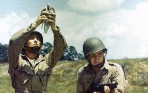 A pigeon named G.I. Joe came to the rescue of British troops during World War II, when radio transmissions failed.