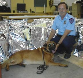The seizure of approximately 1,500 pounds (680 kg) of marijuana, found by K-9 Breston during the routine check of a self-storage facility