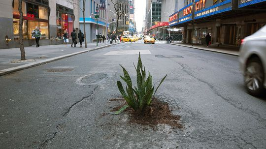 'Rogue' Road Crews Are Fixing Unfilled Potholes