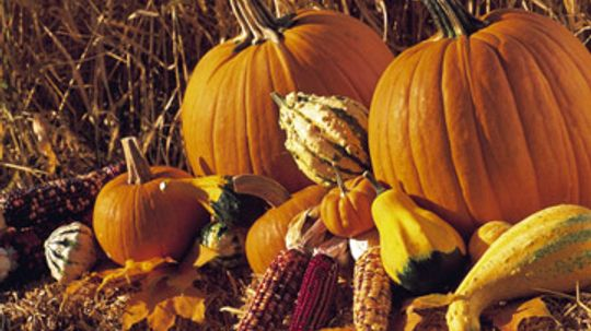 Our Easy Guide for Prepping Pumpkin