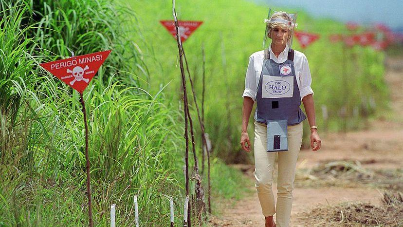 Princess Diana, landmine