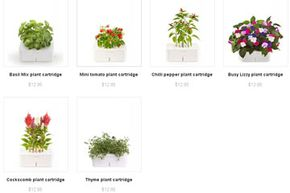 As of May 2012, the following six cartridges are available from Click and Grow: basil mix, mini tomato, chili pepper, busy lizzy, cockscomb and thyme.