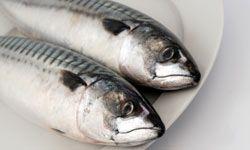 Mackerel packs all kinds of omega-3.