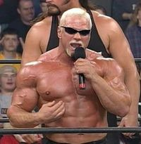 Scott Steiner has wrestled in several different wrestling federations, including the NWA, WCW, WWF and WWE.