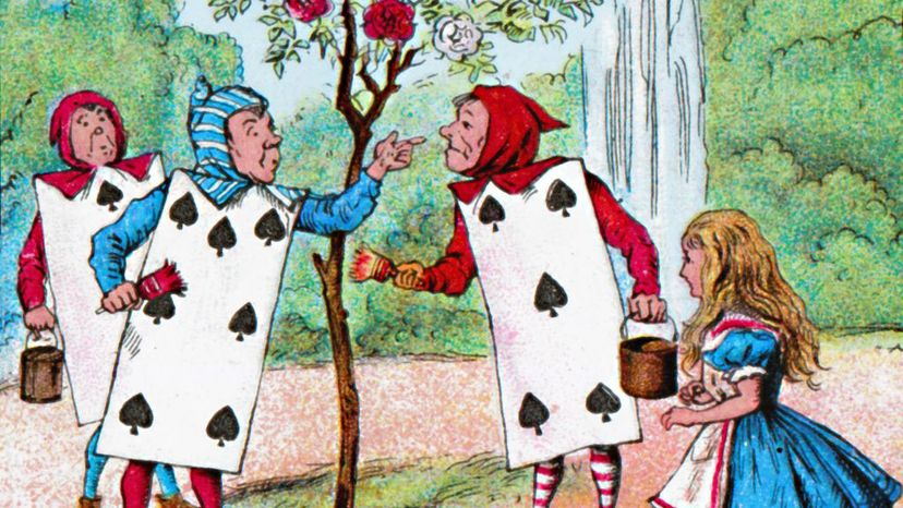 playing cards, Alice in Wonderland