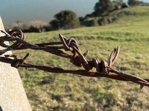 Rusty barbed wire, particularly when sagging, also carries the potential for tetanus.