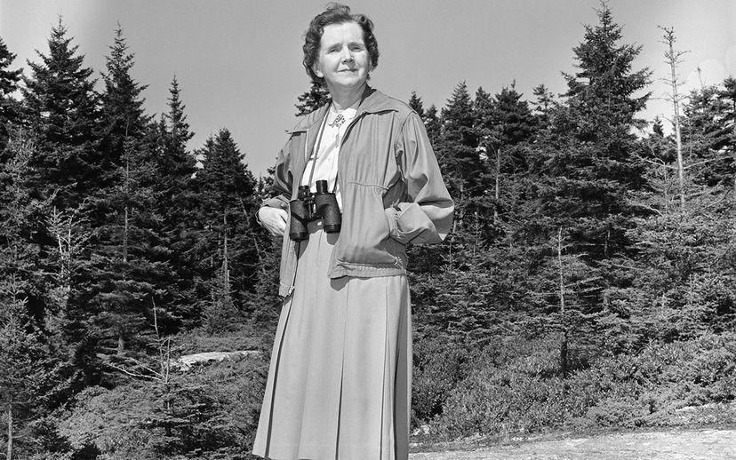 Rachel Carson Dorothy Freeman