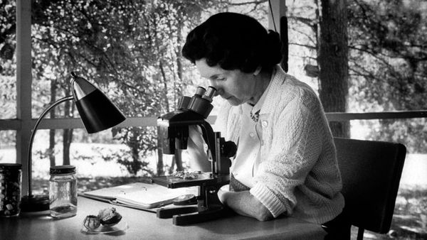 10 Things You Should Know About Rachel Carson