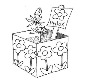 Kids can make their own planter.
