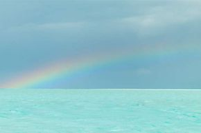 Not only do no two people see the same rainbow, each of your two eyes sees a different one.