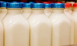 Keep milk out of your diet while recovering from diarrhea.