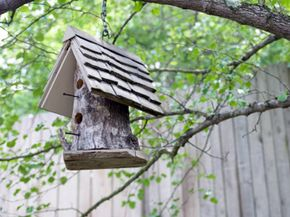 Building a birdhouse is a perfect way to put wood scraps and old wood to use.