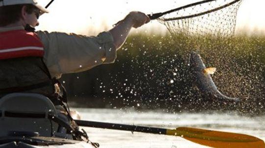 Top 3 Redfish Fishing Techniques