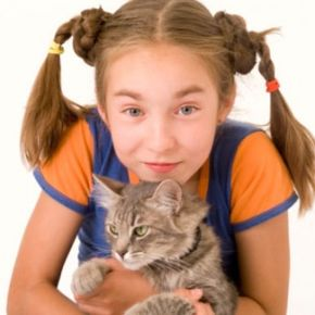 As cute as they might be, cats are a major source of allergies.