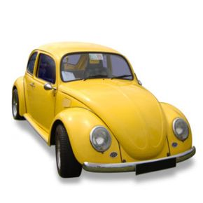 Spot a bug? Time to slug! Or not...
