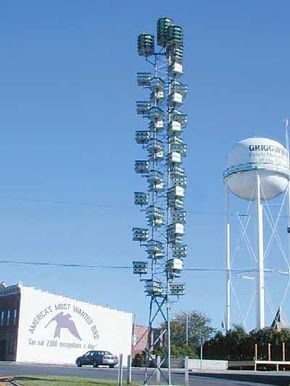 The Purple Martin House was created to help with the terrible mosquito problem plaguing Griggsville, Illinois.