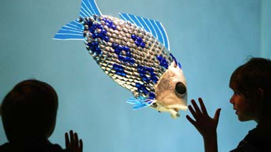 Can robot fish find pollution?