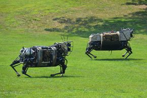 Two four-legged LS3 robots on duty.