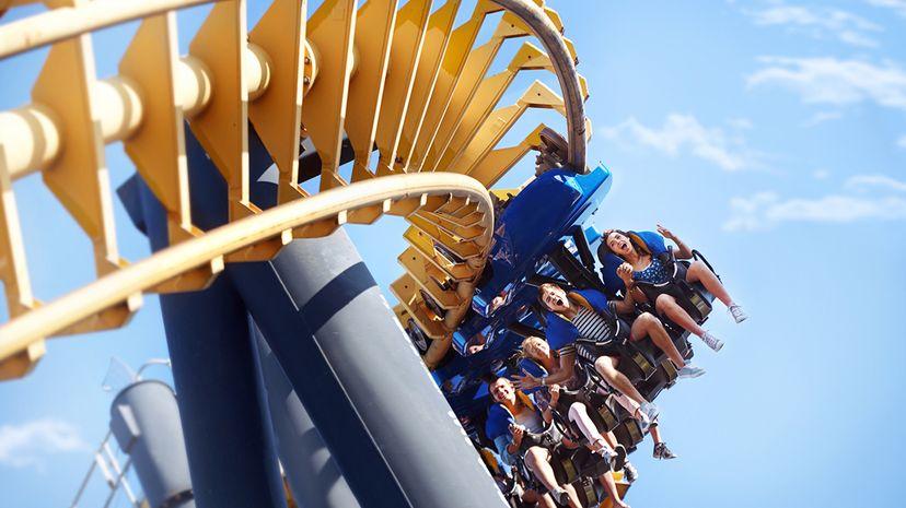 roller coaster riders